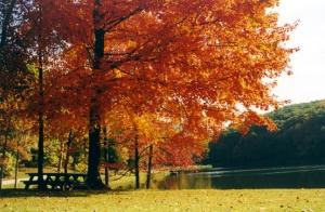 Jackson County Indiana Parks